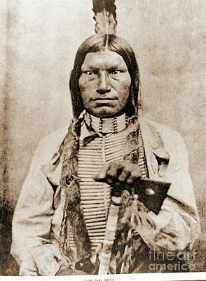 Photograph - Low Dog Sioux by Gary Wonning