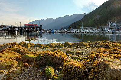 Low Tide At Horseshoe Bay Canada Art Print by David Gn