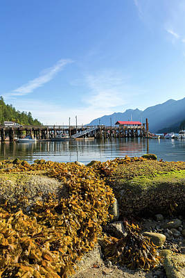 Photograph - Low Tide At Horseshoe Bay Canada On A Sunny Day by David Gn