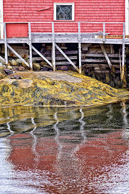 Photograph - Low Tide At Peggy's Cove 4 by Tatiana Travelways