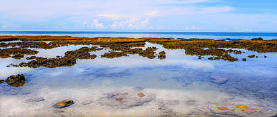 Photograph - Low Tide - Cape Tribulation - Far North Queensland, Australia by Lexa Harpell