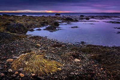 Beastie Boys - Low Tide in Blandford, Nova Scotia #2 by Mike Organ