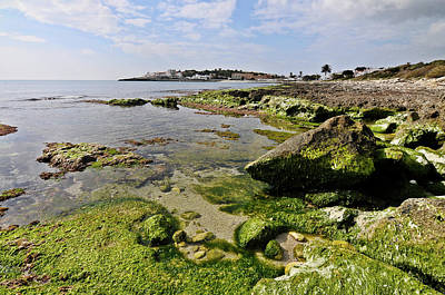 Photograph - Low Tide In Green by Pedro Cardona Llambias