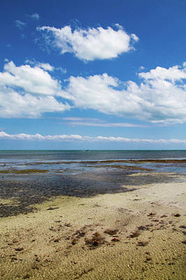 Photograph - Low Tide In Paradise - Key West by Bob Slitzan