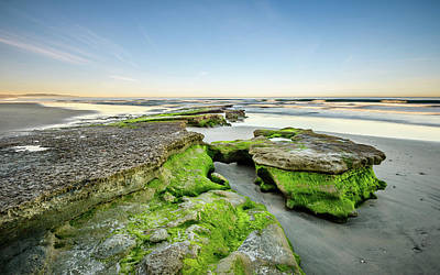 Photograph - Low Tide Morning At Tabletop Reef by Alexander Kunz