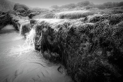 Photograph - Low Tide Mysteries by Bill Posner