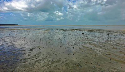 Photograph - Low Tide No. 69-1 by Sandy Taylor
