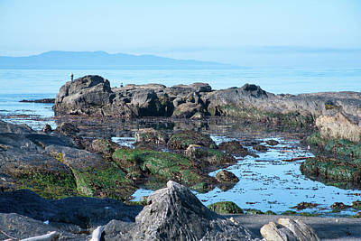 Photograph - Low Tide On Botany Bay by Keith Boone