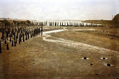 Photograph - Low Tide Oregon Coast  by Michelle Calkins