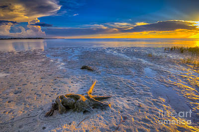 Spring Scenes Photograph - Low Tide Stump by Marvin Spates