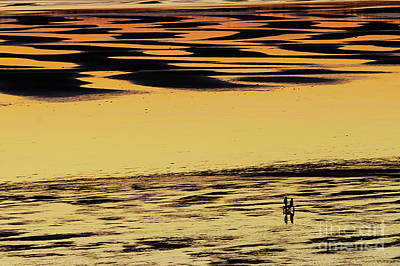 Photograph - Low Tide Sunset Reflection by Paul Conrad