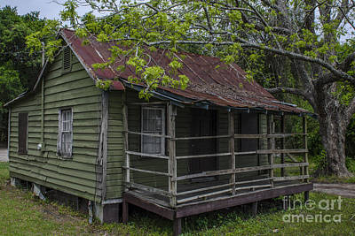 Photograph - Lowcountry Cultural Past by Dale Powell