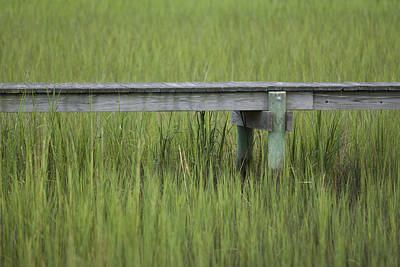 Lowcountry Dock Over Marsh Grass Art Print