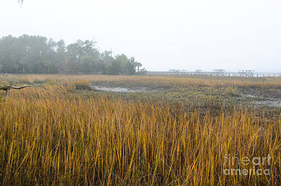Photograph - Lowcountry Fog by Dale Powell