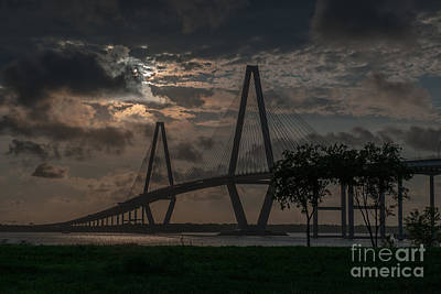 Photograph - Lowcountry Grace by Dale Powell