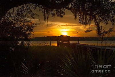 Photograph - Lowcountry Scene by Dale Powell