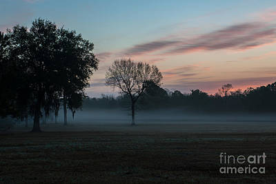 Photograph - Lowcountry Sunrise Fog  by Dale Powell