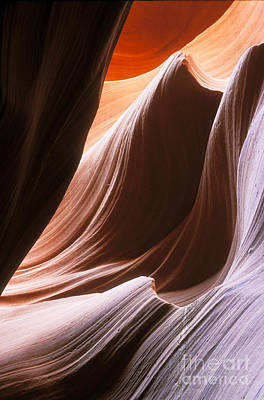 Photograph - Lower Antelope Slot Canyon by Sandra Bronstein
