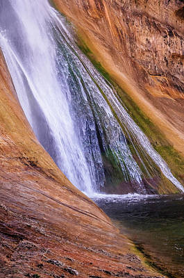 Photograph - Lower Calf Creek Falls by Chuck Jason