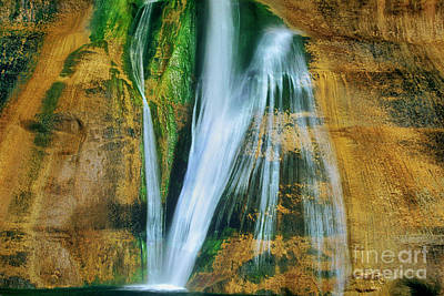Photograph - Lower Calf Creek Falls Escalante Grand Staircase Nm Utah by Dave Welling