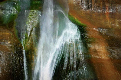 Photograph - Lower Calf Creek Falls by Maria Coulson
