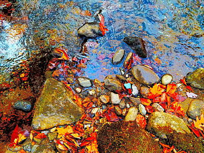 Photograph - Lower Childs Brook 32 by George Ramos