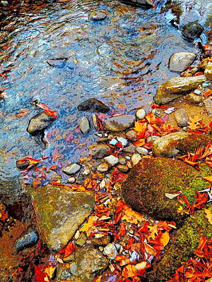 Photograph - Lower Childs Brook 34 by George Ramos