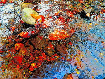 Photograph - Lower Childs Brook 43 by George Ramos