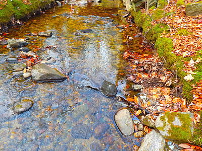 Photograph - Lower Childs Brook 49 by George Ramos