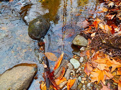Photograph - Lower Childs Brook 54 by George Ramos