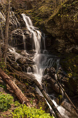 Photograph - Lower Doyles River Falls by Brenda Jacobs