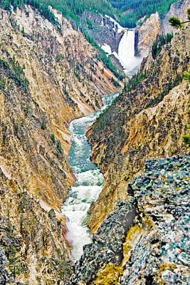 Photograph - Lower Fall Of The Yellowstone River by Gene Norris