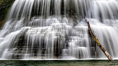Lower Falls And Log Art Print by Stephen Stookey