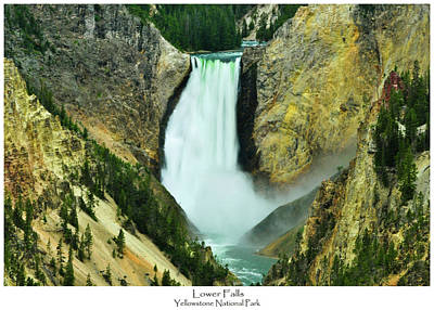 Yellowstone Photograph - Lower Falls by Greg Norrell