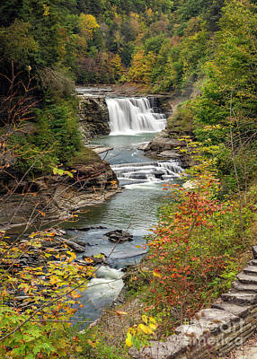Photograph - Lower Falls Of Letchworh Park by Karen Jorstad