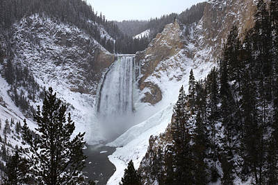 Yellowstone Wall Art - Photograph - Lower Falls, Yellowstone River by Mike Buchheit