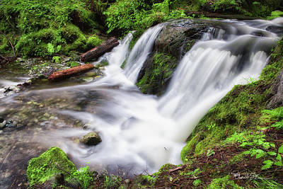 Photograph - Lower Forest Glen Falls by Charlie Duncan