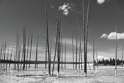 Photograph - Lower Geyser Basin 1 by Jeff Brunton