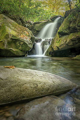 Photograph - Lower Grotto Falls by Patrick Shupert