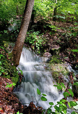 Photograph - Lower Massanutten Spring Waterfall 2016 by Lara Ellis