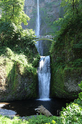 Photograph - Lower Multnomah Falls by Carol Groenen