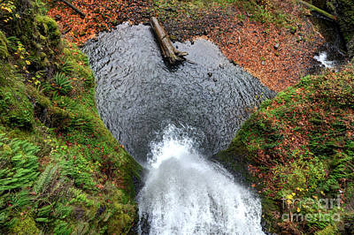 Lower Multnomah Falls From Benson Bridge - Columbia Gorge Art Print by Gary Whitton