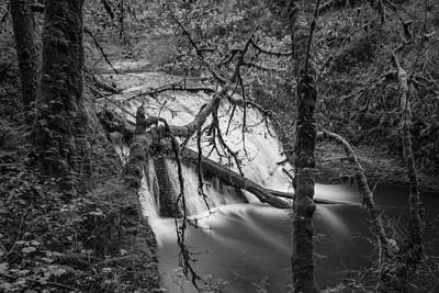 Photograph - Lower North Falls In Black And White  by John McGraw
