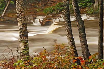 Lower Tahquamenon Falls 5 Art Print