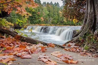 Sault Ste Marie Photograph - Lower Tahquamenon Falls by Norris Seward