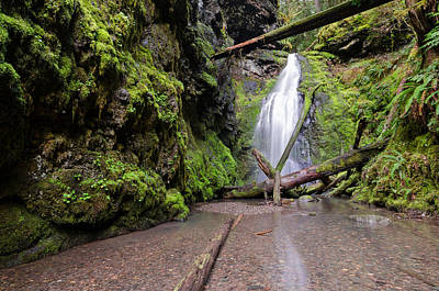 Photograph - Lower Trestle Creek Falls by Margaret Pitcher