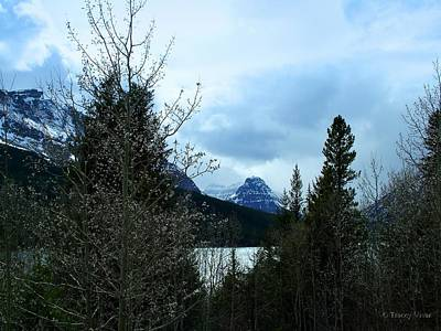 Photograph - Lower Two Med Lake Through The Trees by Tracey Vivar
