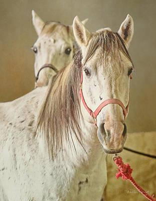 Digital Art - Lower Valley Horsemans Association #1 by Walter Herrit