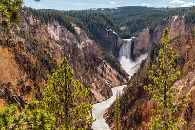 Waterfalls And Trees Landscape Photograph - Lower Yellowstone Canyon Falls 5 - Yellowstone National Park Wyoming by Brian Harig