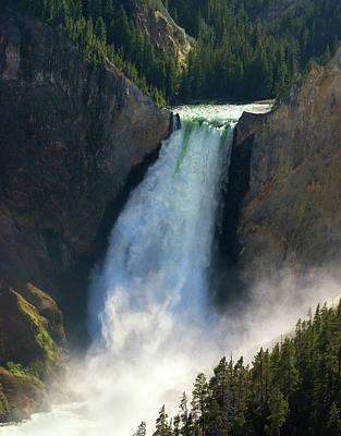 Photograph - Lower Yellowstone Falls by Art Cole